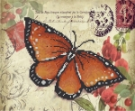 Серия «Бабочка» 2