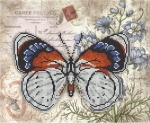 Серия «Бабочка» 3