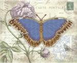Серия «Бабочка» 4